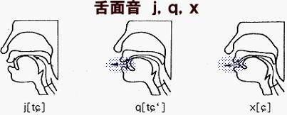 小雪の中国語学習《子音》」